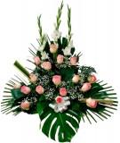 Centro 8 - 20 rosas