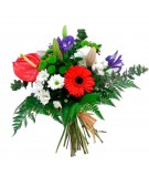 Ramo de flor variada y Anthurium rojo